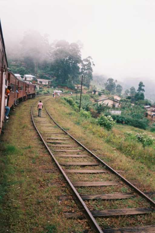 Tales from Serendib #7 – Sri Lanka's tea country