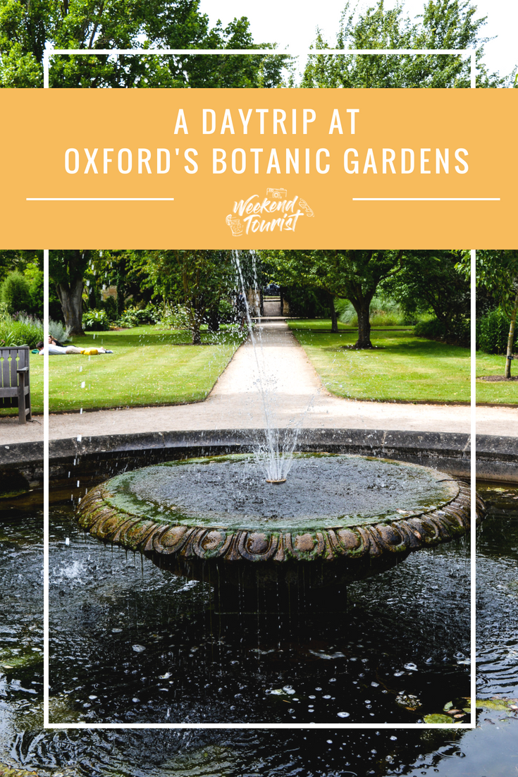 Here's everything you need to know for a day trip to Oxford's Botanic Garden.